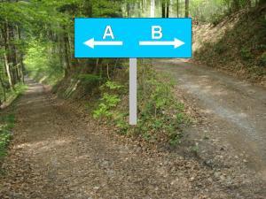 4 Arten der Entscheidung
